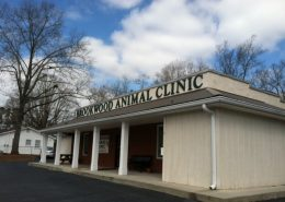 Brookwood Animal Clinic - Pic 01