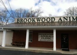 Brookwood Animal Clinic - Pic 04